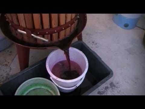 How to make wine in Bulgaria