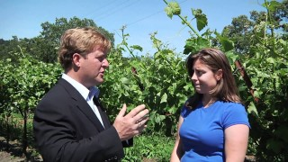 Talking with Fourth Generation Winemaker, Angelina Mondavi
