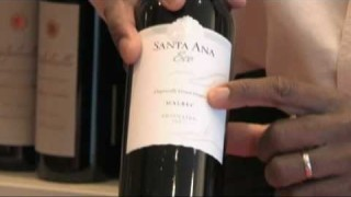 Wine Types & Selection Tips : Choose Organic Wines
