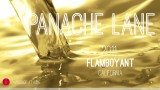 Wine Pick Of The Week: Panache Lane 2011 Flamboyant